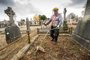 28/10/2015  Over 40 staff from Limerick Civic Trust conducted a giant clean-up of Mount Saint Lawrence Cemetery in advance of All Souls Day.  Pictured is Joe Quinlivan.  The Mass Clean-Up was part of ongoing work by Limerick Civic Trust in Mount Saint Lawrence Cemetery.  Staff at the Trust have already restored and repaired 50 graves and tended to over 150 graves in Mount Saint Lawrence.   Limerick Civic Trust is also involved with the restoration of the Mortuary Chapel at Mount Saint Lawrence cemetery.  Work is progressing steadily with the total restoration and refurbishment of the apse roof near completion. The Limerick Civic Trust, which was formally constituted in 1983, is an independent, non-profit making voluntary society. It is mainly supported from donations by industry, business, charitable trusts and individuals. Its mission is to improve Limerick's city environment through positive action.  Picture credit: Diarmuid Greene/Fusionshooters